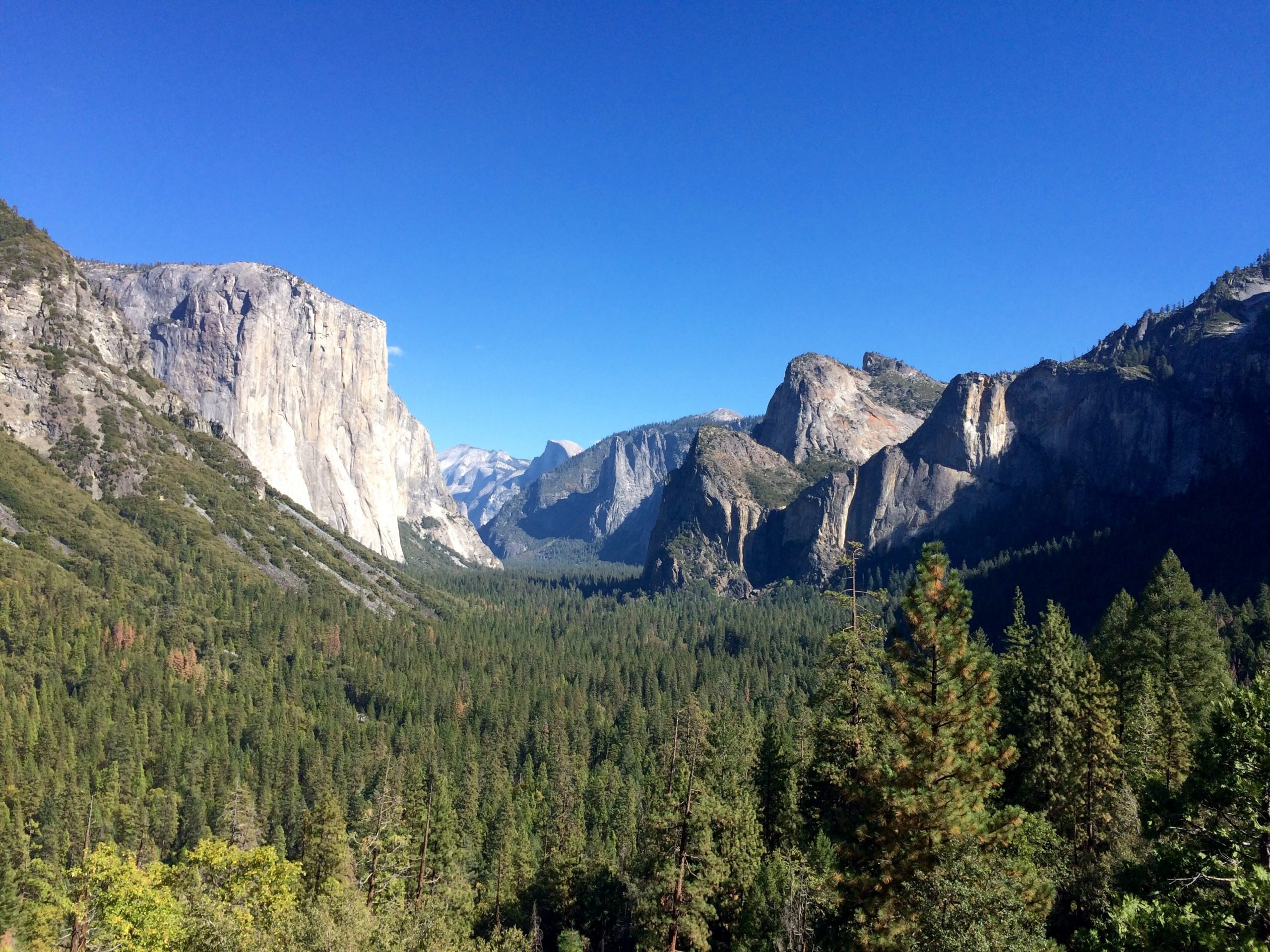 Yosemite National Park featuring El Capitan on the left